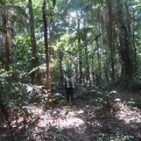 """auf gehts zum nächsten Camp in den Dschungel • <a style=""""font-size:0.8em;"""" href=""""http://www.flickr.com/photos/127204351@N02/15690012766/"""" target=""""_blank"""">View on Flickr</a>"""
