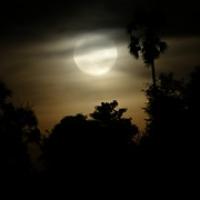 "der Mond geht auf • <a style=""font-size:0.8em;"" href=""http://www.flickr.com/photos/127204351@N02/17560522681/"" target=""_blank"">View on Flickr</a>"