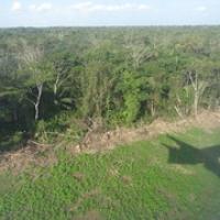 """Landeanflug im Dschungel • <a style=""""font-size:0.8em;"""" href=""""http://www.flickr.com/photos/127204351@N02/15528532817/"""" target=""""_blank"""">View on Flickr</a>"""