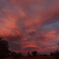 """tollsten Sonnenuntergang auf einer Restarea • <a style=""""font-size:0.8em;"""" href=""""http://www.flickr.com/photos/127204351@N02/17167300238/"""" target=""""_blank"""">View on Flickr</a>"""