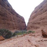 """Walpa Gorge • <a style=""""font-size:0.8em;"""" href=""""http://www.flickr.com/photos/127204351@N02/16732470604/"""" target=""""_blank"""">View on Flickr</a>"""