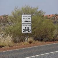 """die gab's auf einmal wieder - die Radfahrer • <a style=""""font-size:0.8em;"""" href=""""http://www.flickr.com/photos/127204351@N02/17855323369/"""" target=""""_blank"""">View on Flickr</a>"""