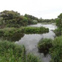"""im Botanischen Garten • <a style=""""font-size:0.8em;"""" href=""""http://www.flickr.com/photos/127204351@N02/16481248515/"""" target=""""_blank"""">View on Flickr</a>"""