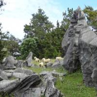"""oberhalb der Höhlen stehen skurile Felsen • <a style=""""font-size:0.8em;"""" href=""""http://www.flickr.com/photos/127204351@N02/16385691171/"""" target=""""_blank"""">View on Flickr</a>"""